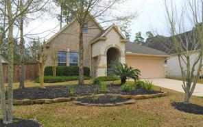 23 Tapestry Forest, The Woodlands, TX, 77381