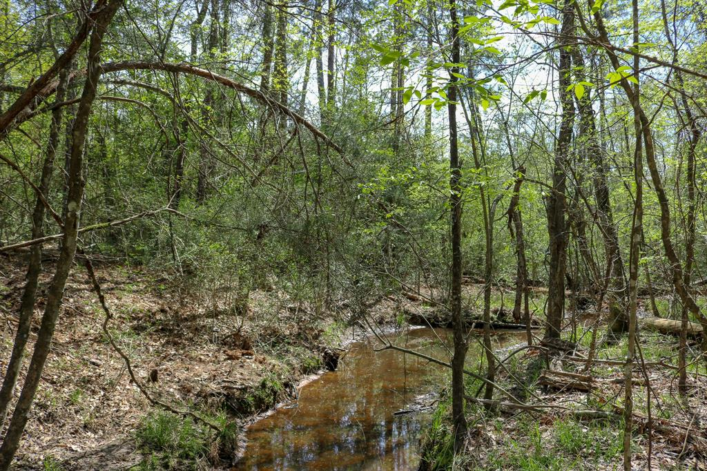 7 acres County Rd 207A, Plantersville, TX 77363