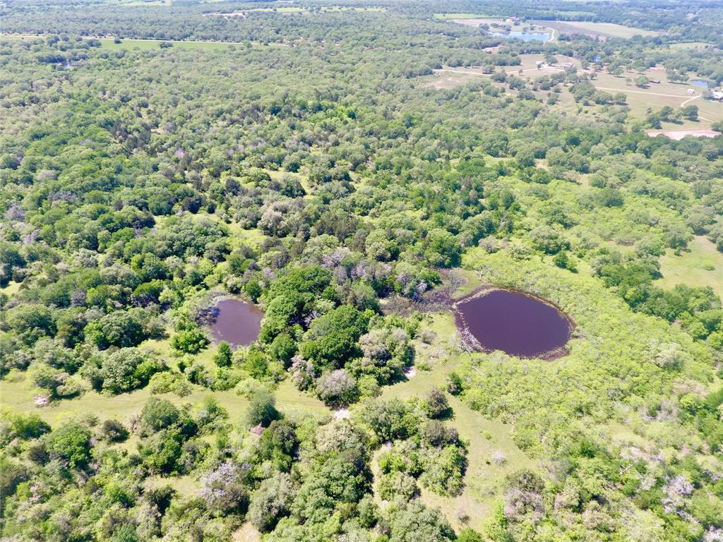 121 acres just east of Waelder and minutes from IH 10, great location for a weekend property, half way between Houston, San Antonio, Austin and Victoria. With good trails leading to the old (tear down) cabin and to the far north large pond this is surely to please any hunter or outdoor enthusiast. 3 Ponds, large trees and heavily wooded areas provide a haven for wildlife. Hunt for deer, turkey, hog, etc or simply drive the property with an ATV and enjoy the outdoors. An electrical meter is in place and has a septic that has not been used for approximately 15 years, working condition unknown. Land is presently used for cattle grazing and hunting, is fenced on 3 sides. The road frontage is appropriately .362 miles and has two entrances, on the East and West end of the property making this property attractive to split. This property will also make a great place to build your dream home and still have an abundance of room for wildlife and outdoor activities.