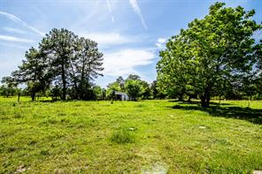 20 Ac Old Midway Road, Midway TX 75852