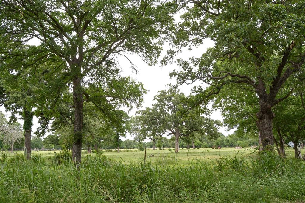 000 Reids Bend, Bastrop, TX 78602