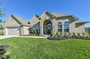 2707 Silver Falls Lane, Rosharon, TX 77583