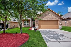 210 Black Swan Place, The Woodlands, TX 77354