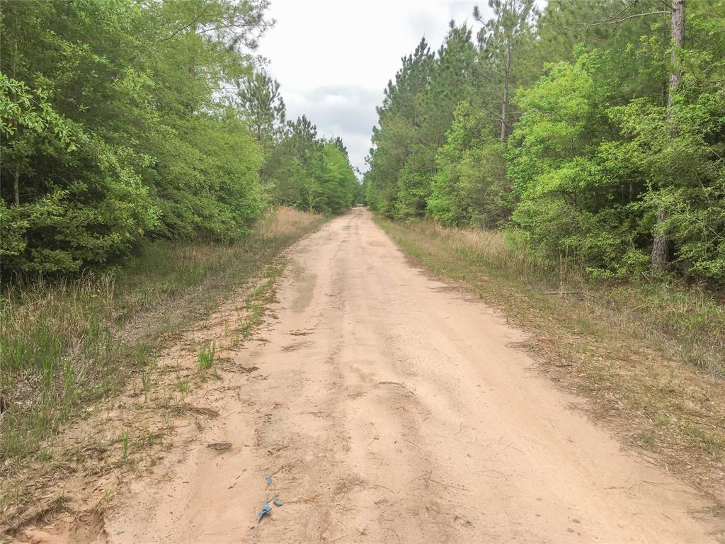 000 Off of Post Oak Road, Kountze, TX 77625