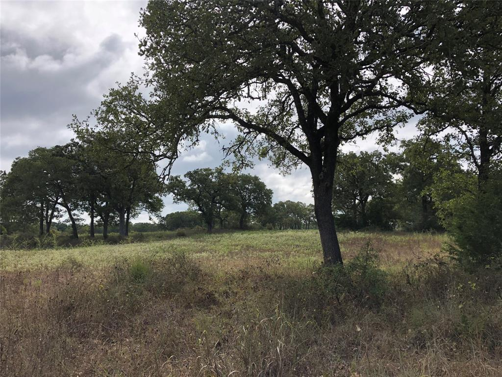 000 County Road 130, Ledbetter, TX 78946