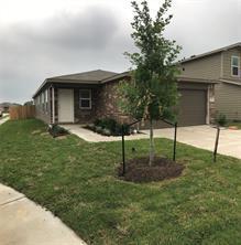 17830 Ryegrass, Hockley, TX, 77447