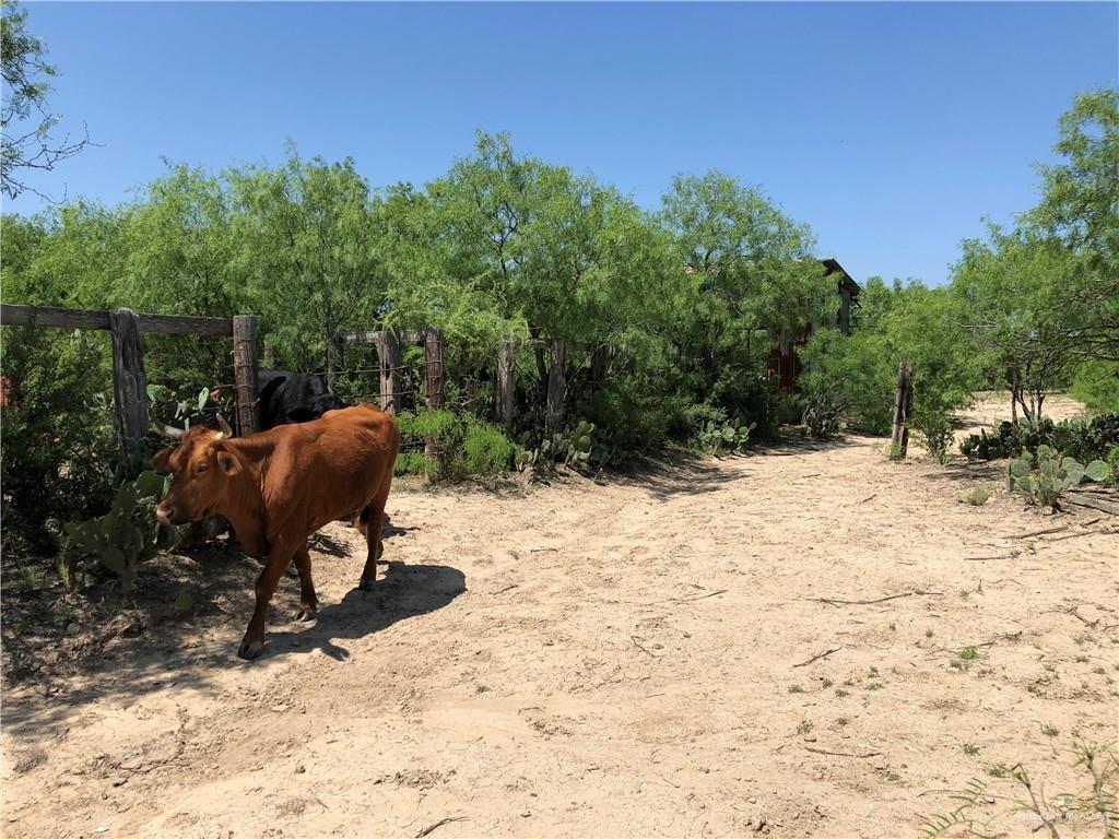 874 N FM 649 Road, Rio Grande City, TX 78582