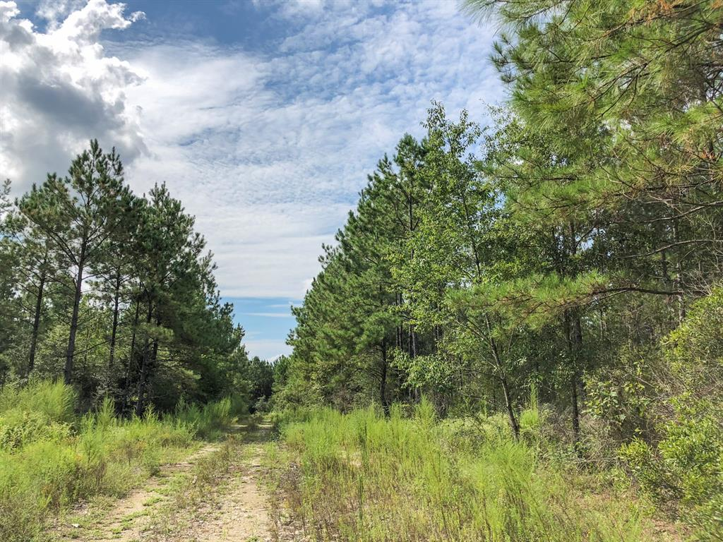 0 CR 4280, Woodville, TX 75979