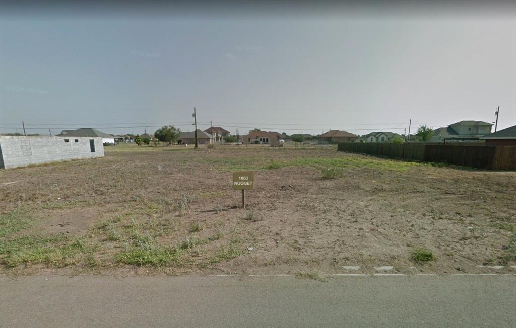 1803 Nugget Street, Penitas, TX 78576