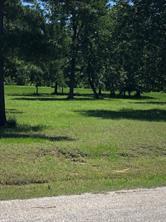 9 quiet pine way, huntsville, TX 77340