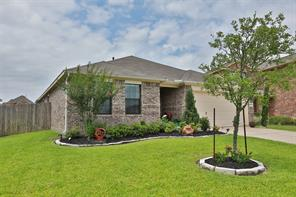 23119 Red Birch Court, Tomball, TX 77375