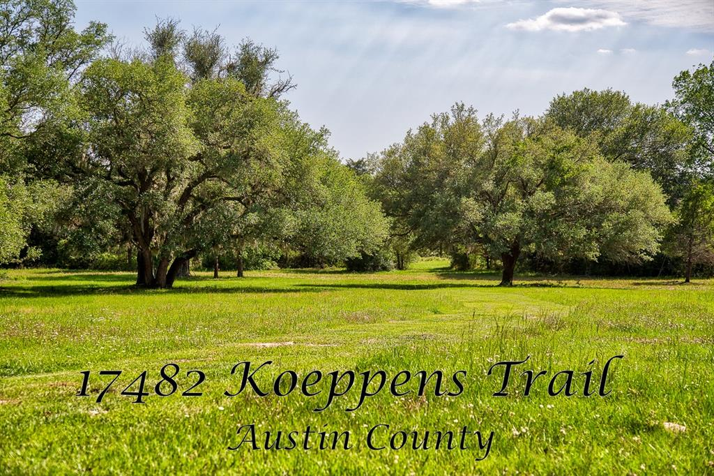 17482 Koeppens Trail, Cat Spring, TX 78933