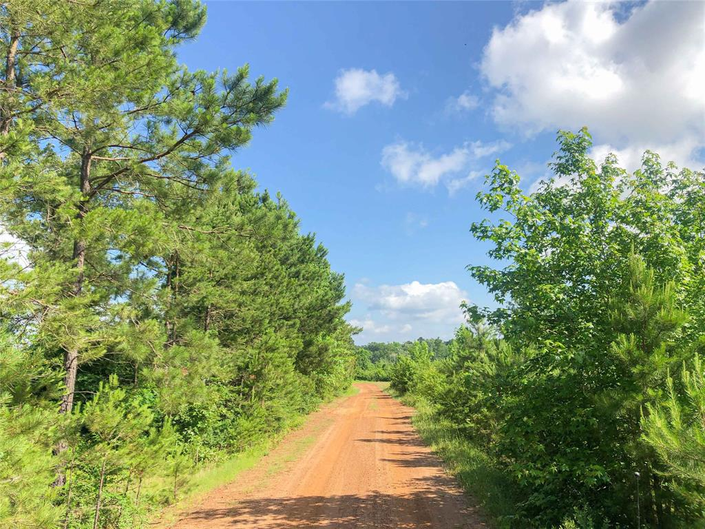 0 Beaver Bend Road, Gilmer, TX 75645