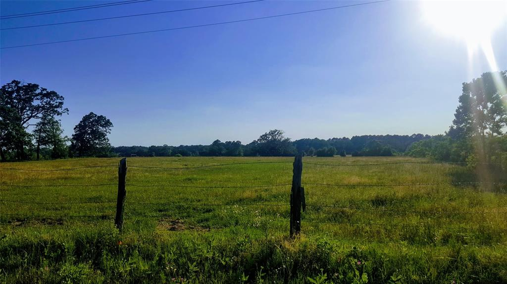 13 Ac County Road 1805, Latexo, TX 75849