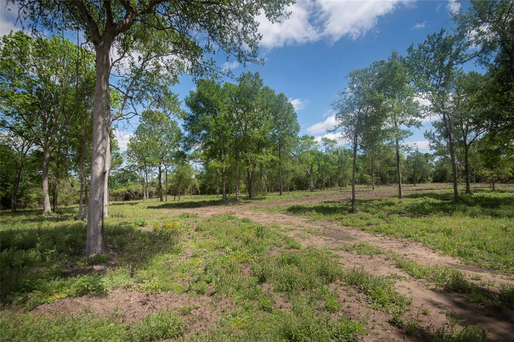 6 Woodland Ranch Lane, Chappell Hill, TX 77426