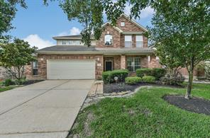 17226 Double Lilly Drive, Houston, TX 77095