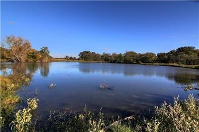 TBD County Road 415, Navasota, TX 77868