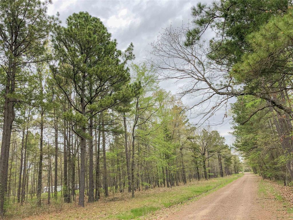0 County Rd 4223, Simms, TX 75574