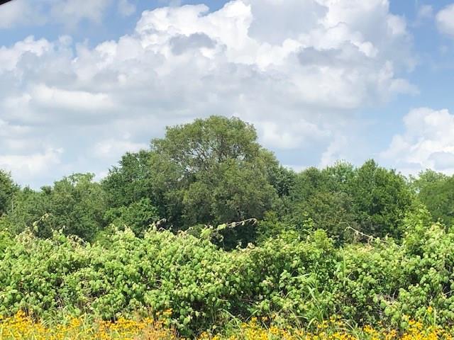 5214 Fm 954, Fayetteville, TX 78940
