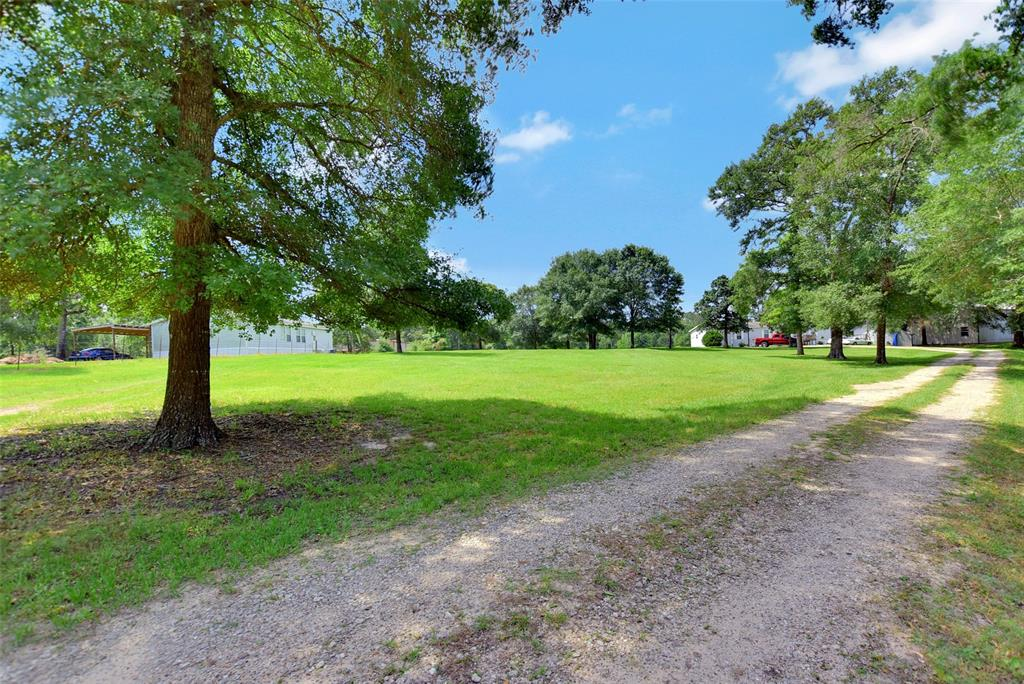 Tract 2-3 County Road 302, Plantersville, TX 77363