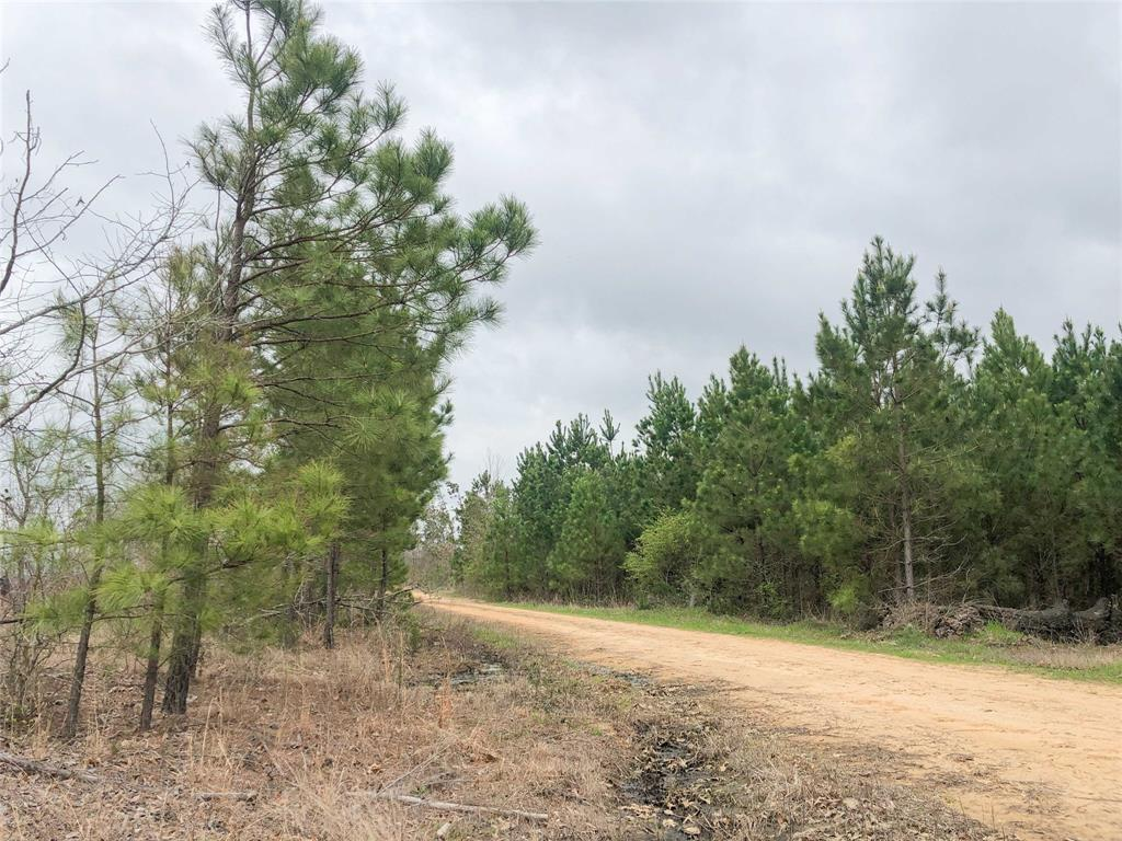 00000 County Road 4429, Avery, TX 75554