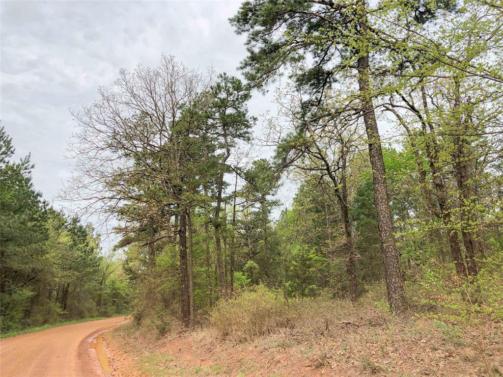 00000 CR 2864, Hughes Springs, TX 75656
