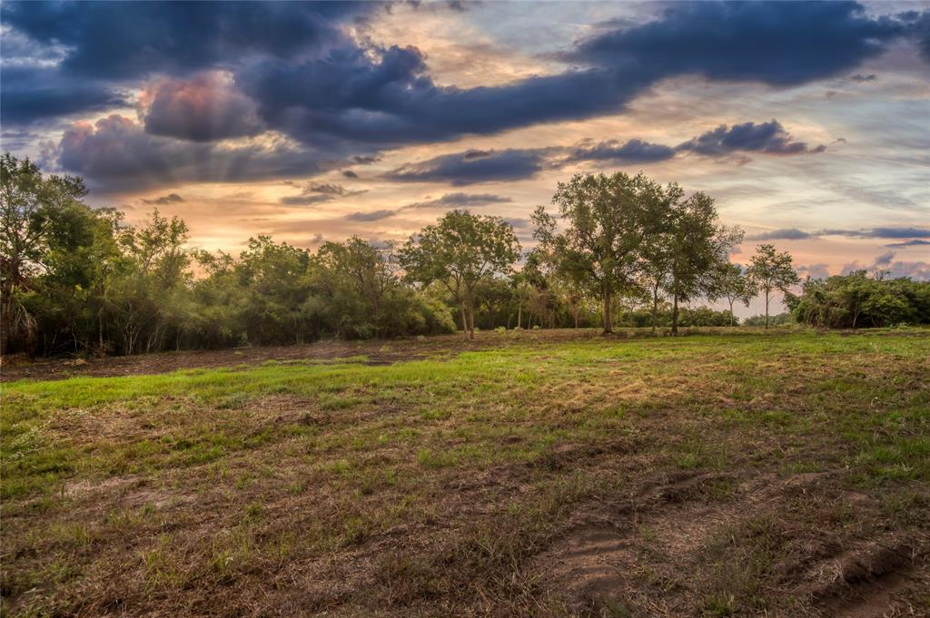 5 Woodland Ranch Lane, Chappell Hill, TX 77426