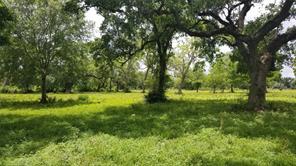 0 County Road 461, Brazoria, TX, 77422