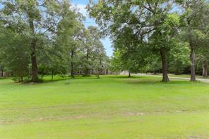 21959 Blazing, New Caney, TX, 77357