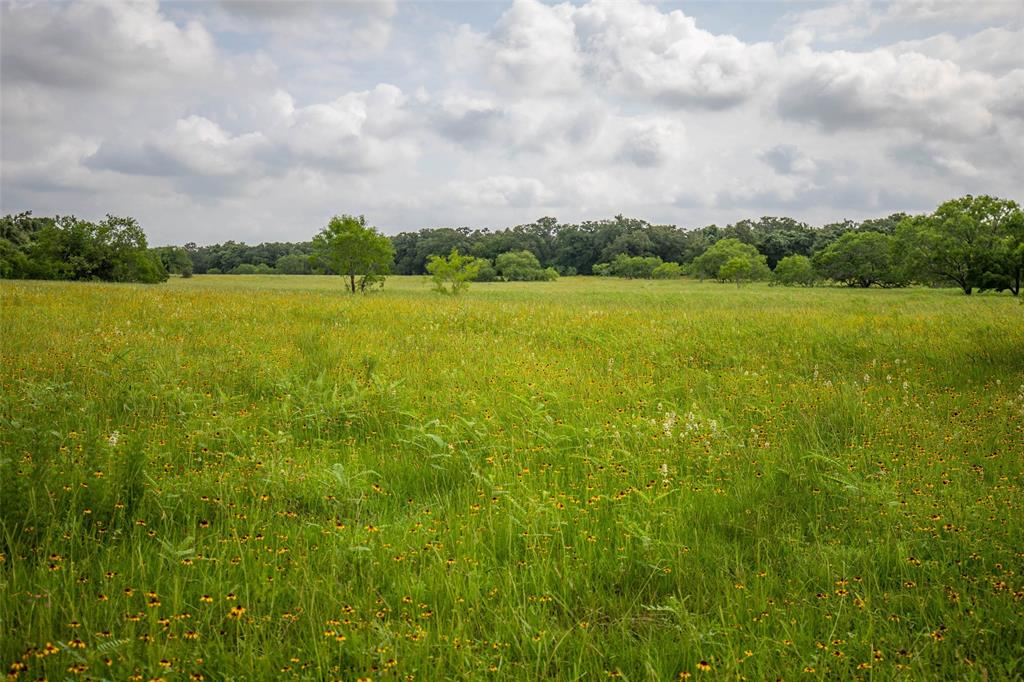 Fertile, raw land just off Interstate 10 in the transition zone of the Texas Post Oak Savanna and Blackland Prairie. Have a convenient hunting or cattle operation with lush grass and oak trees draped in Mustang grapevines, providing cover for the many deer and hogs in the area. 25% minerals included with a full price offer. New survey needed.