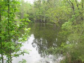 703 placid lake lane, magnolia, TX 77354