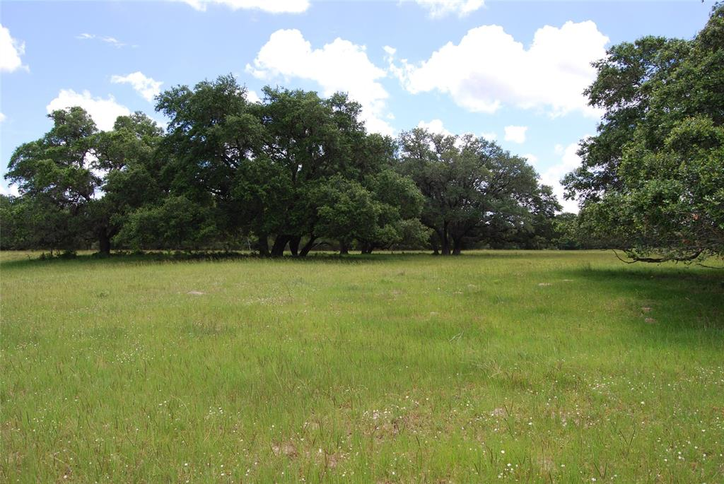 11273 Hahn Road, Sealy, TX 77474