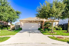 25206 Palm Forest
