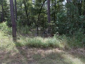Lot 3 Creekbend Drive, Plantersville, TX 77363