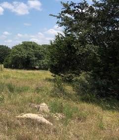 Lot 742 Silas Parker, Blanco, TX 78606