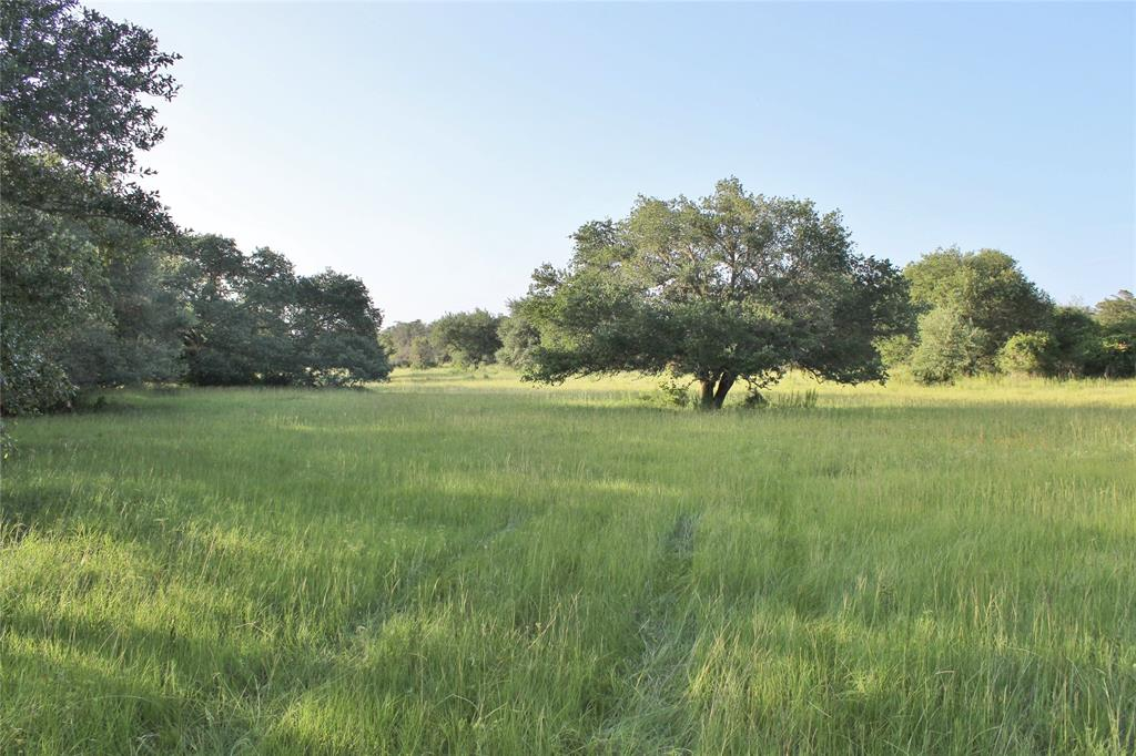 0 Koeppens Trail, Cat Spring, TX 78933
