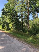 93 Country Wood, Shepherd, TX, 77371