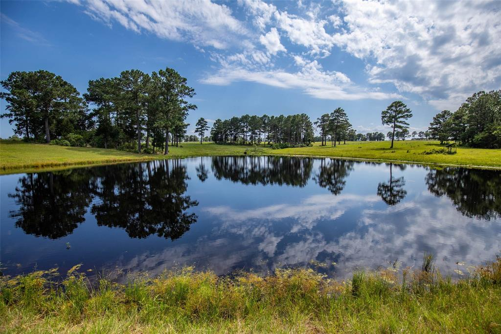 TBD Gotier Trace Road, Paige, Texas 78659, ,Country Homes/acreage,For Sale,Gotier Trace,46771405