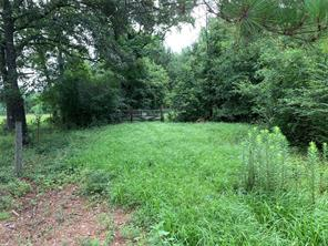 0 Willys Road, New Waverly, TX 77358