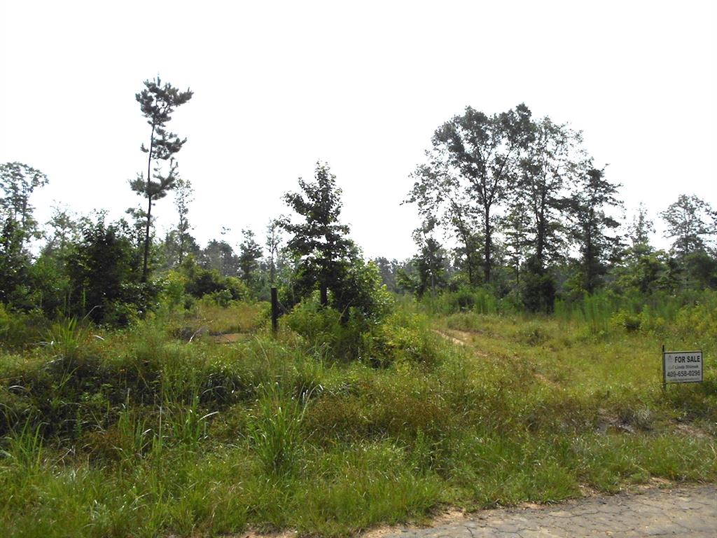 TBD Sumrall Road, Votaw, TX 77376