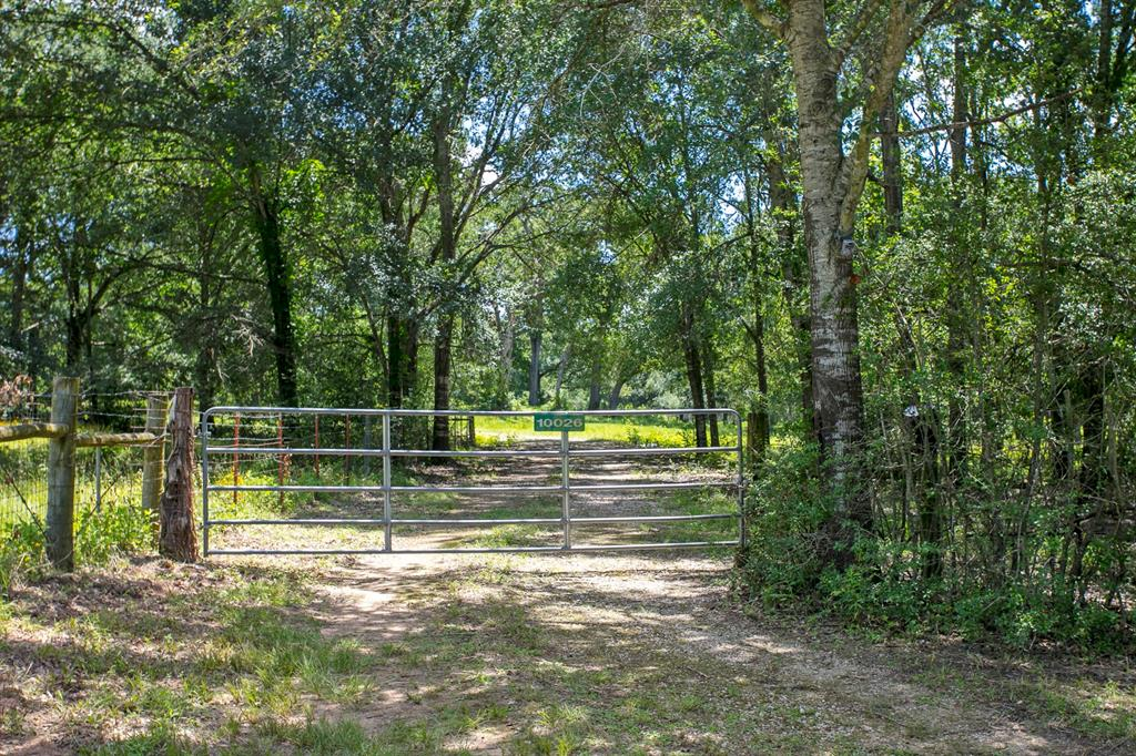 10026 County Road 305, Rockdale, TX 76567