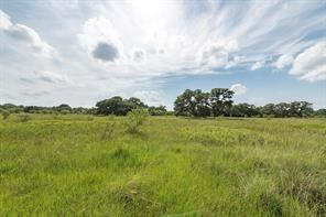 0 County Road 2104, Columbus, TX, 78934