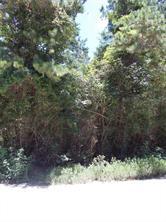 Lot 25 Magnolia Drive, Plantersville, TX 77363