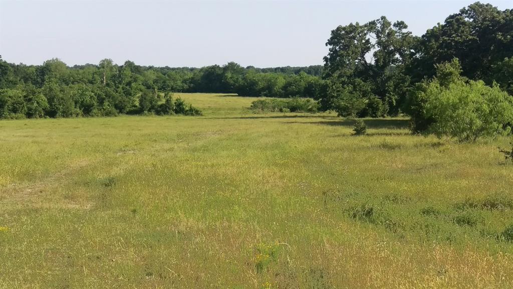 TBD Leaning Oaks Lane, Anderson, TX 77830