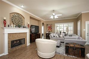 20723 Pinebrook Hollow Lane, Spring, TX 77379
