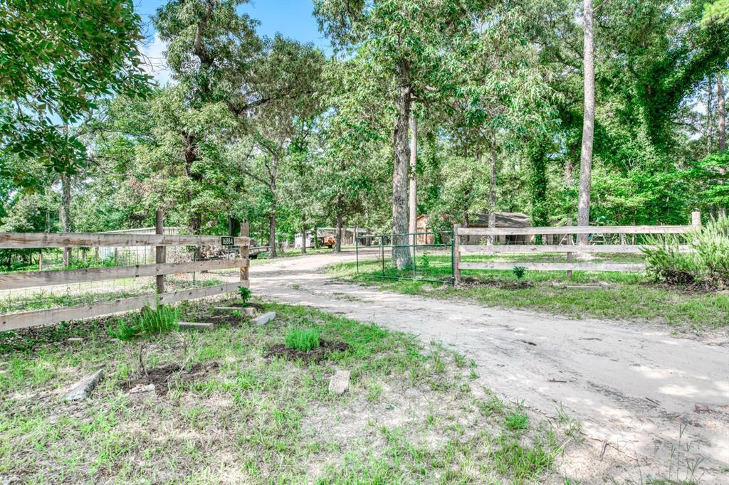 16884 Pine Lane, Plantersville, TX 77363