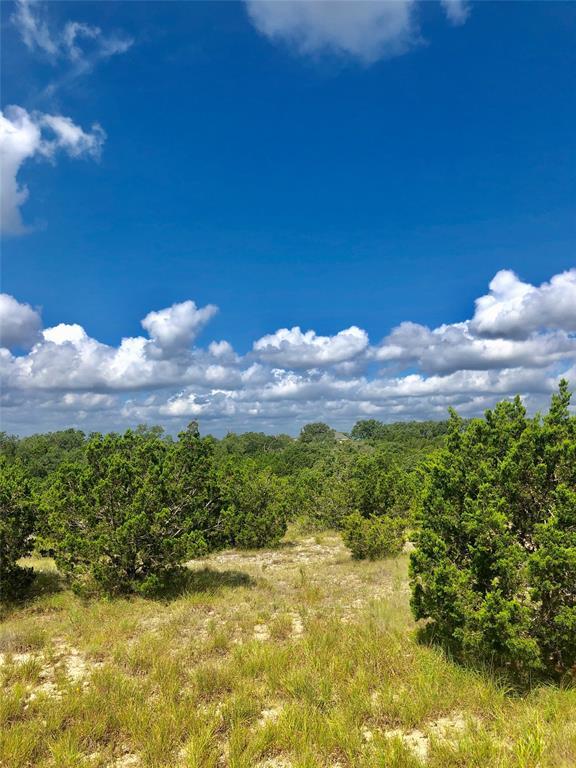 146 Peppergrass Drive, Spring Branch, TX 78070