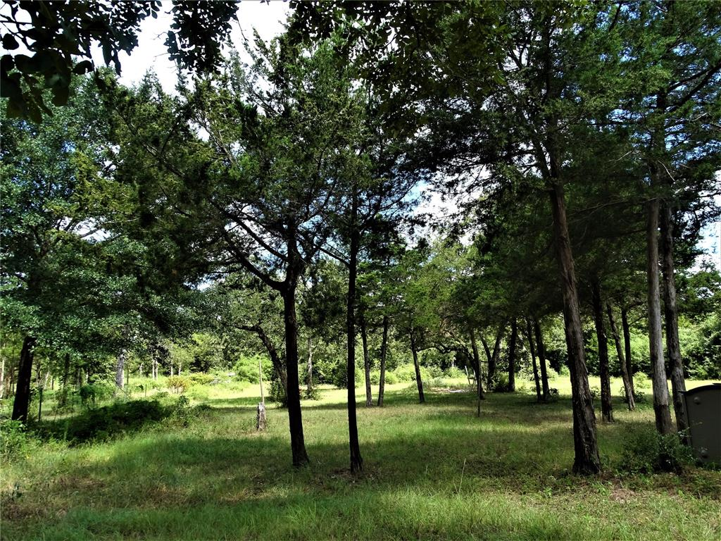 16335 Evelyn Lane, Cat Spring, TX 78933