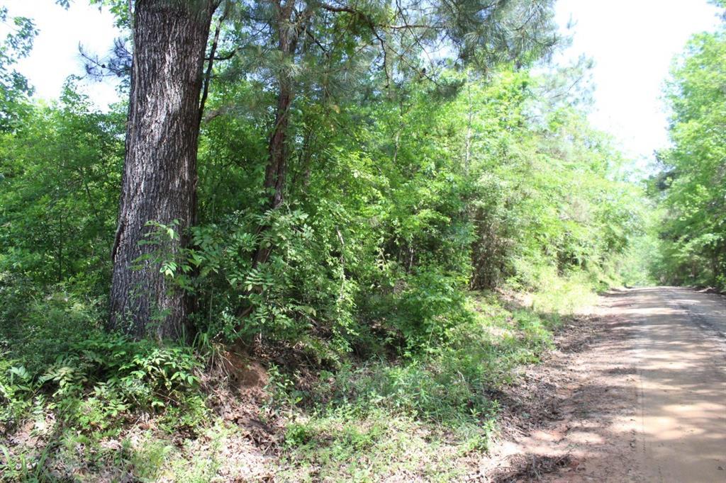 17 ac County Road 1090, Wiergate, TX 75977