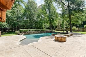 51 Nocturne Woods Place, The Woodlands, TX 77382